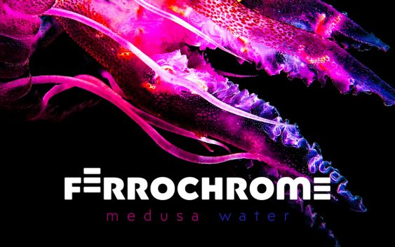 "Ferrochrome release ""Medusa Water"" debut album"