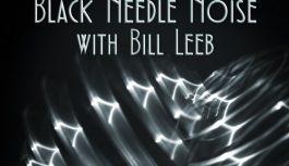 """Black Needle Noise releases """"A Shiver of Want"""" with Bill Leeb"""