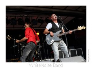 White Noise Band (1)_1