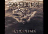 Black Needle Noise: These Mortal Covers (Album Review)
